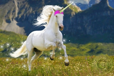 Groupon Offers 58% Off for a 1-Day Unicorn Riding at Ulu Yam